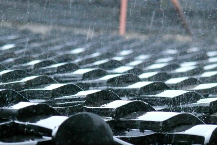 雨雨雨雨雨