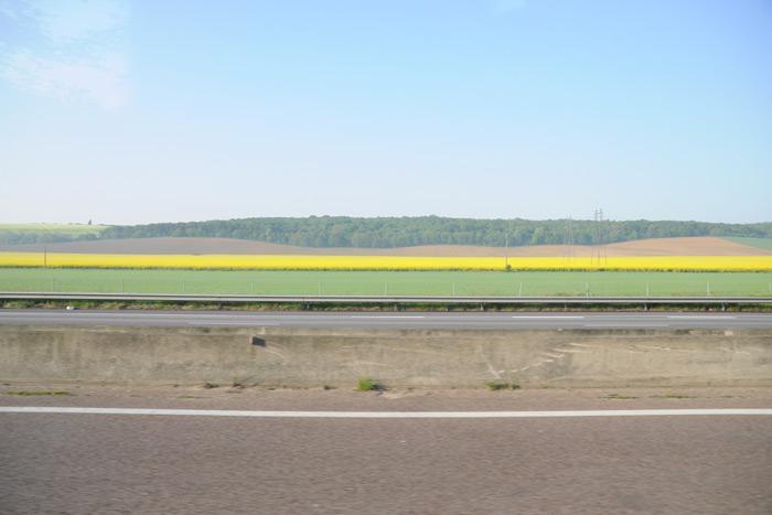 フランスの菜の花畑