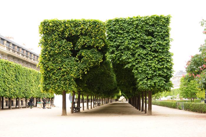 パレ・ロワイヤルの中庭